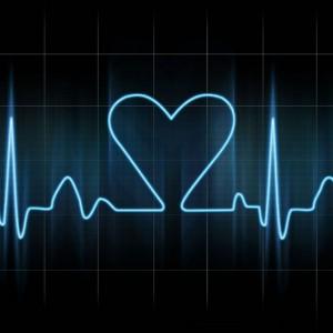 Dani Vox-heart 3